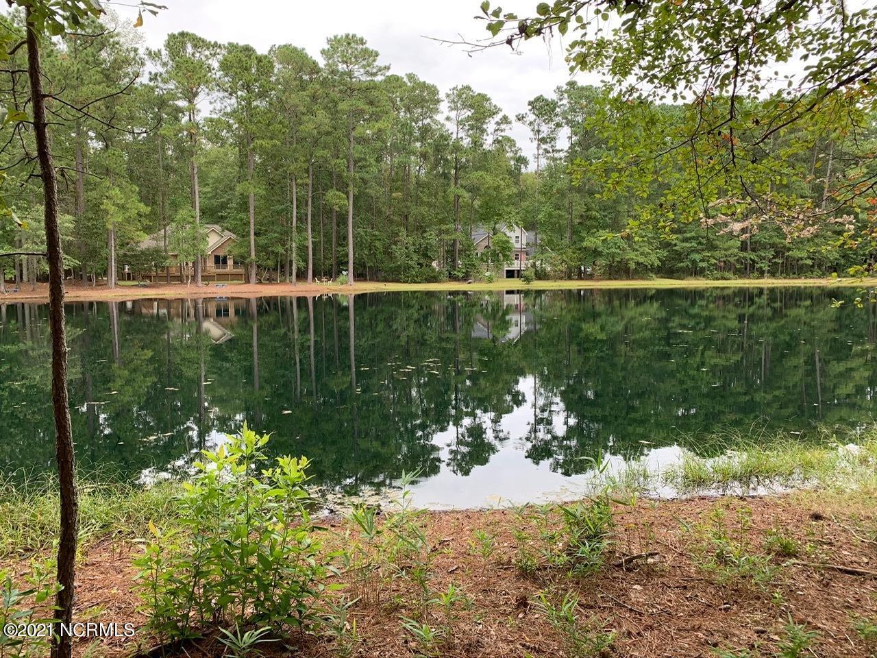 193 Pamlico River Drive, Washington, North Carolina 27889, ,Residential land,For sale,Pamlico River,100260041