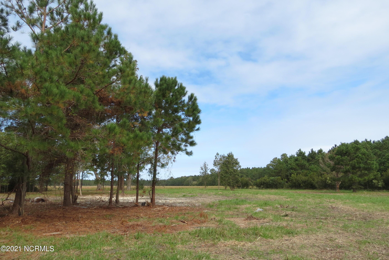 3937 Whortonsville Road, Oriental, North Carolina 28571, ,Residential land,For sale,Whortonsville,100261421