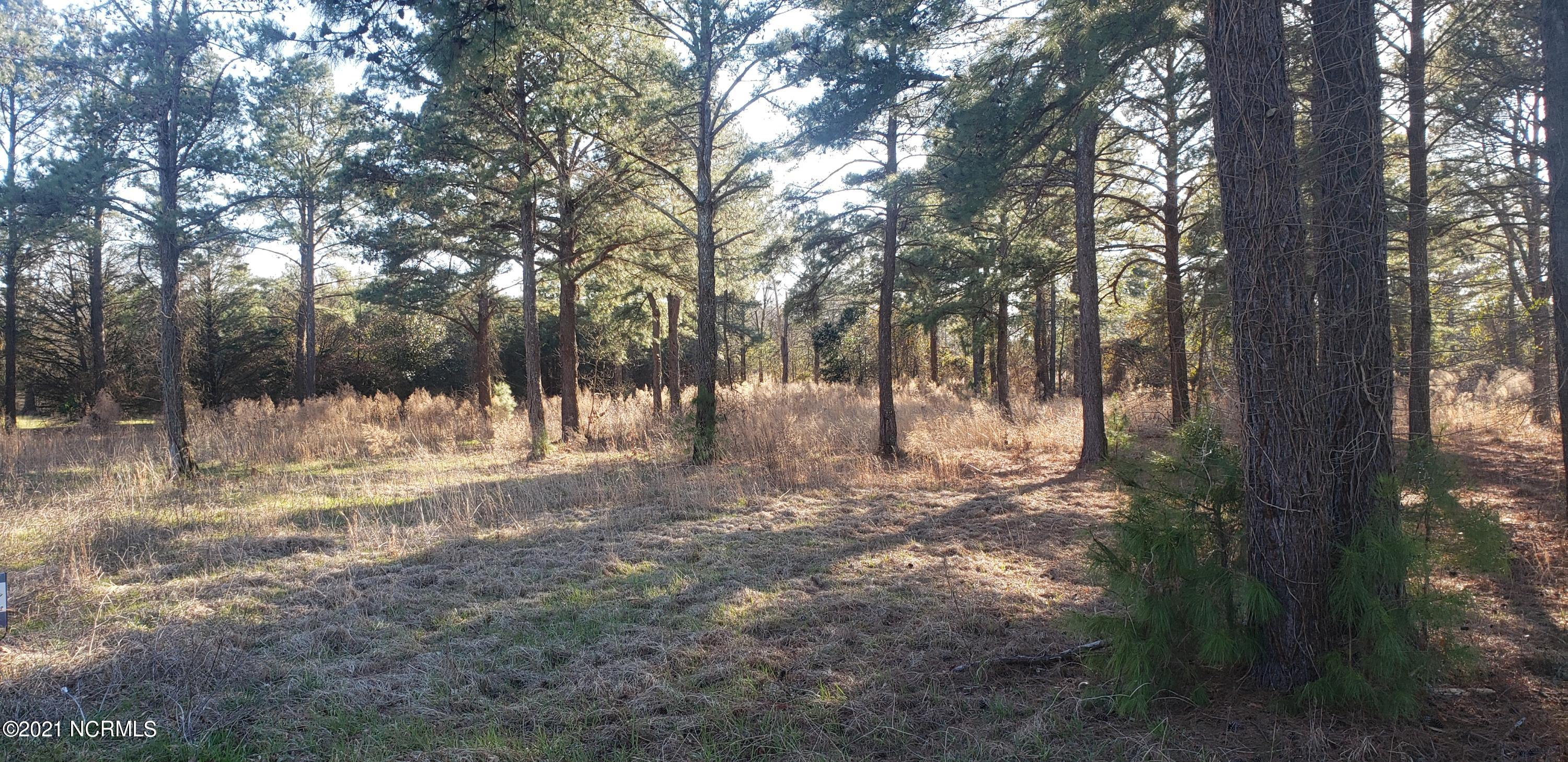 0 Third Street, Snow Hill, North Carolina 28580, ,Residential land,For sale,Third,100261641