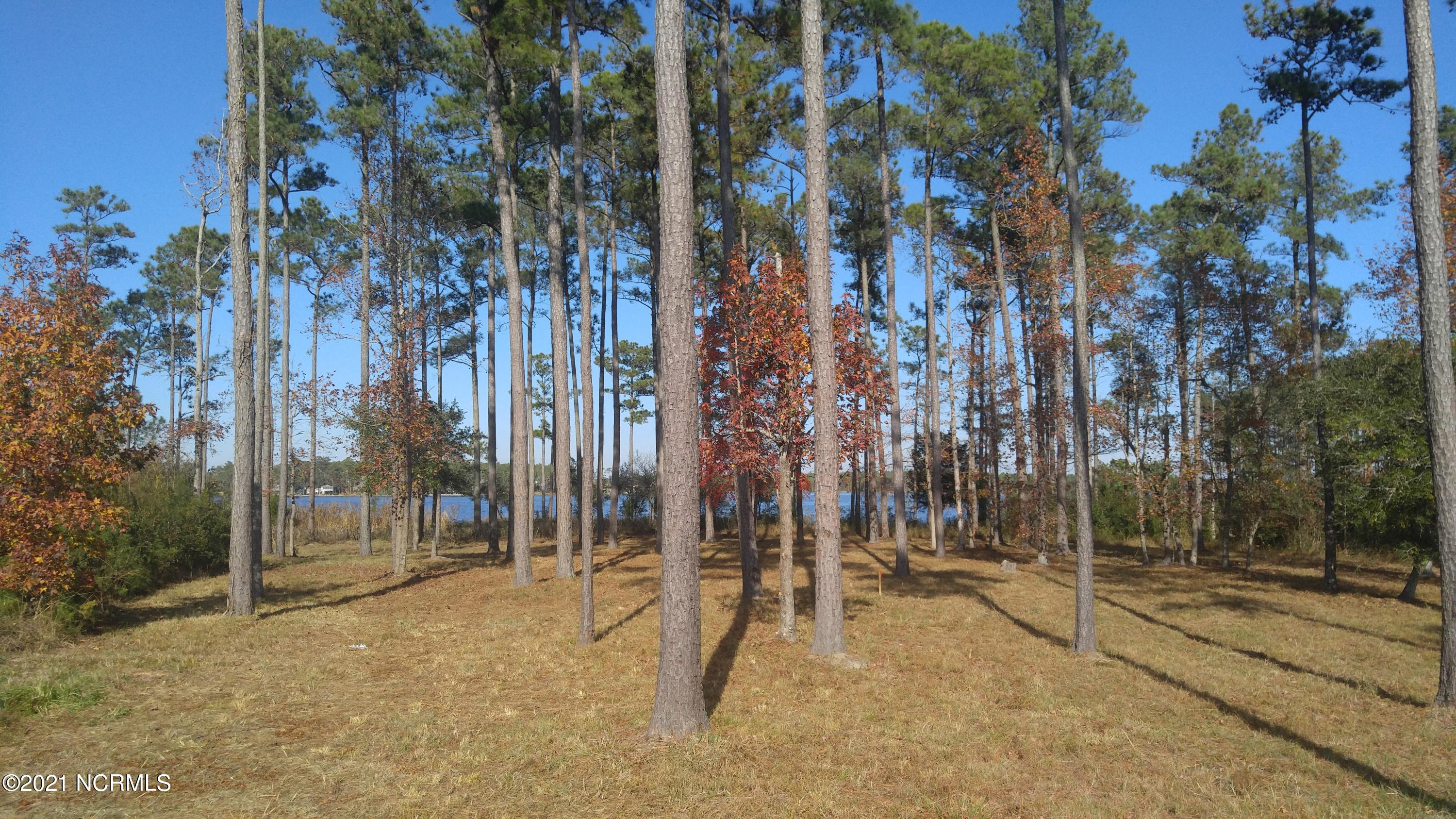 84 Eastcove Way, Oriental, North Carolina 28571, ,Residential land,For sale,Eastcove,100264037