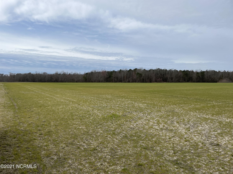 0 Mill Pond Road, Roper, North Carolina 27970, ,Farm,For sale,Mill Pond,100261709