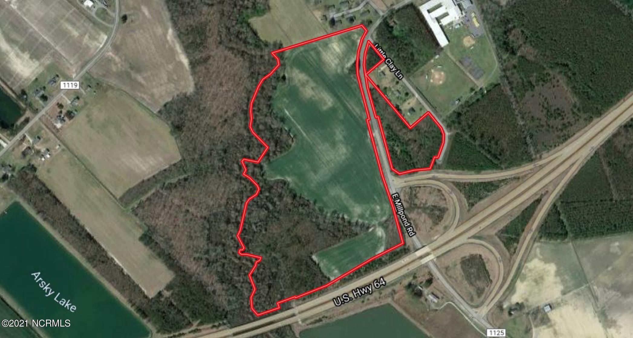 0 Mill Pond Road, Roper, North Carolina 27970, ,Farm,For sale,Mill Pond,100261719