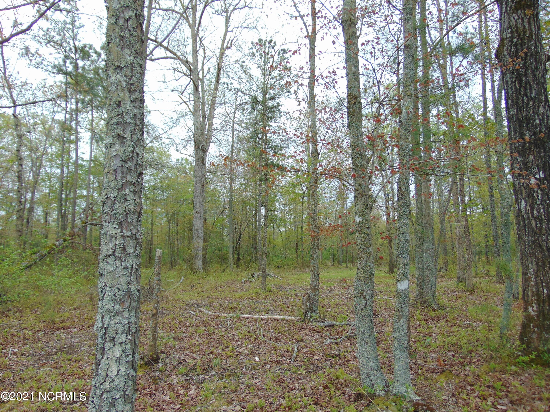 Lot 12 Ashton Drive, Bath, North Carolina 27808, ,Residential land,For sale,Ashton,100261810