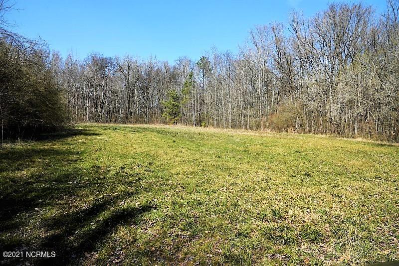 1480 Occoneechee Neck South Road, Jackson, North Carolina 27845, ,Farm,For sale,Occoneechee Neck South,100262068