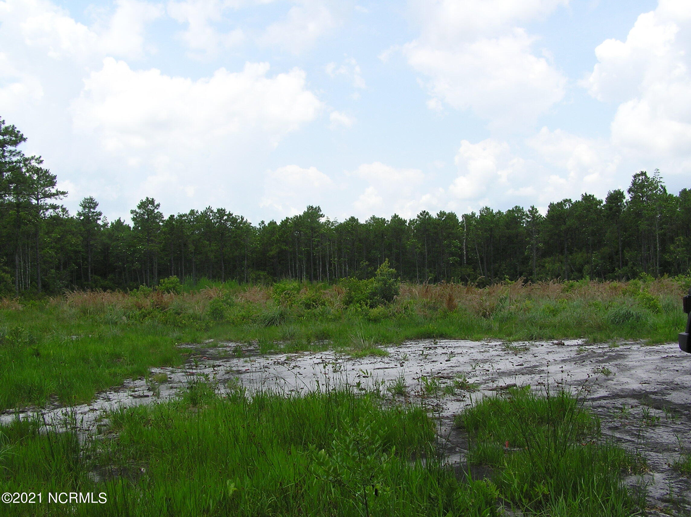 Lot150/151 Greenview Ranches, Wilmington, North Carolina 28411, ,Residential land,For sale,Greenview Ranches,100262149