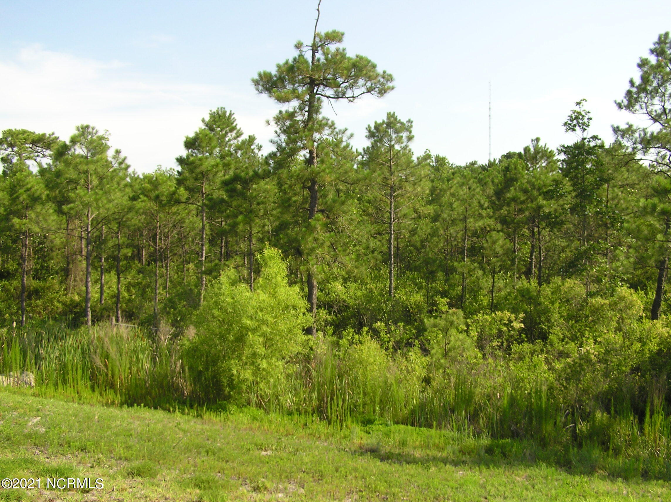 Lot 290 Greenview Ranches, Wilmington, North Carolina 28411, ,Residential land,For sale,Greenview Ranches,100262203