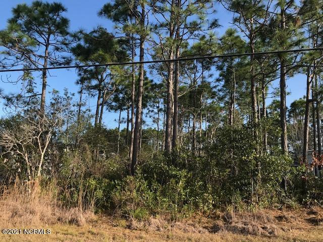 4574 Oakcrest Drive, Southport, North Carolina 28461, ,Residential land,For sale,Oakcrest,100262603