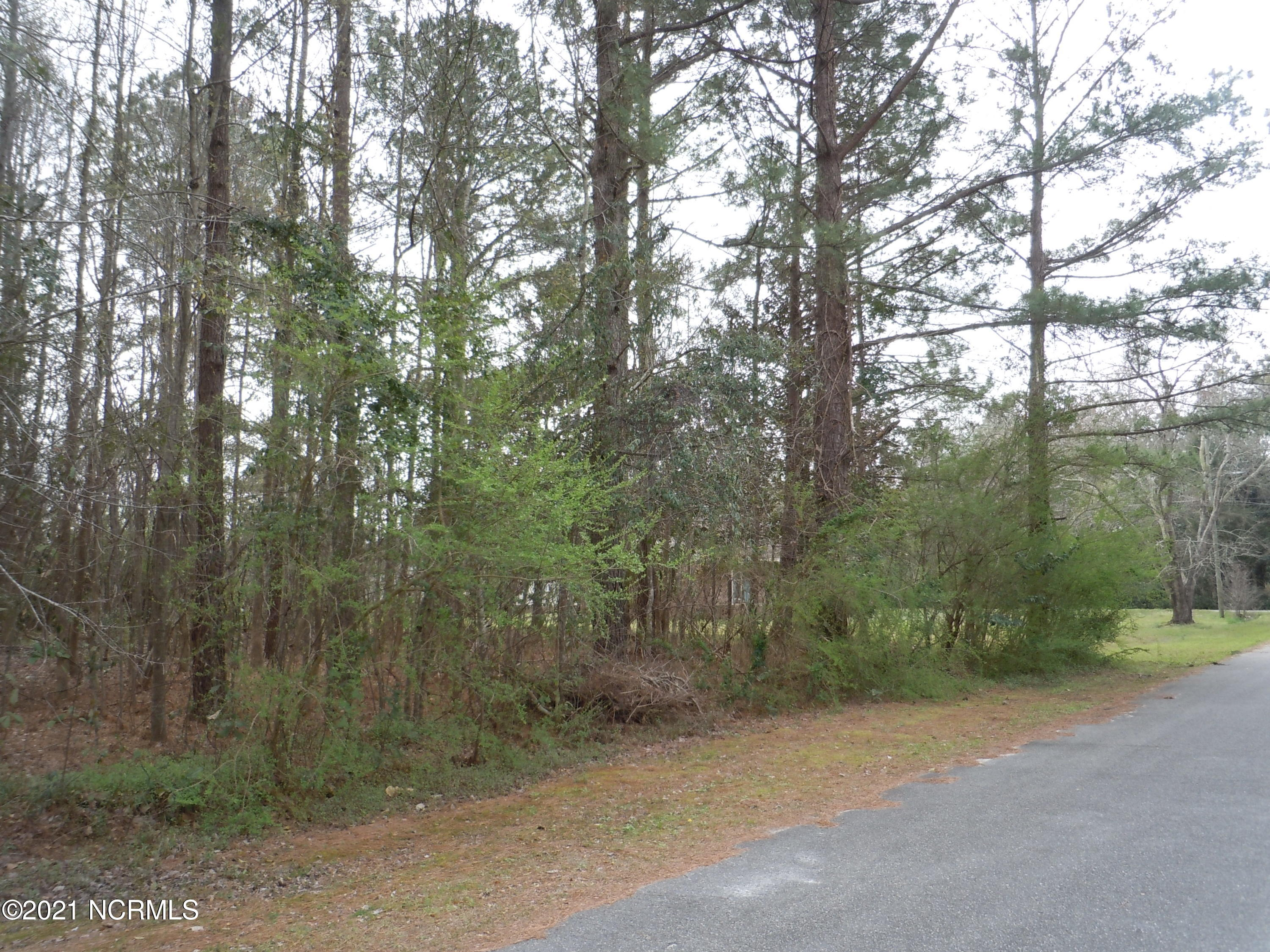 104 Pine Street, Tabor City, North Carolina 28463, ,Residential land,For sale,Pine,100262758
