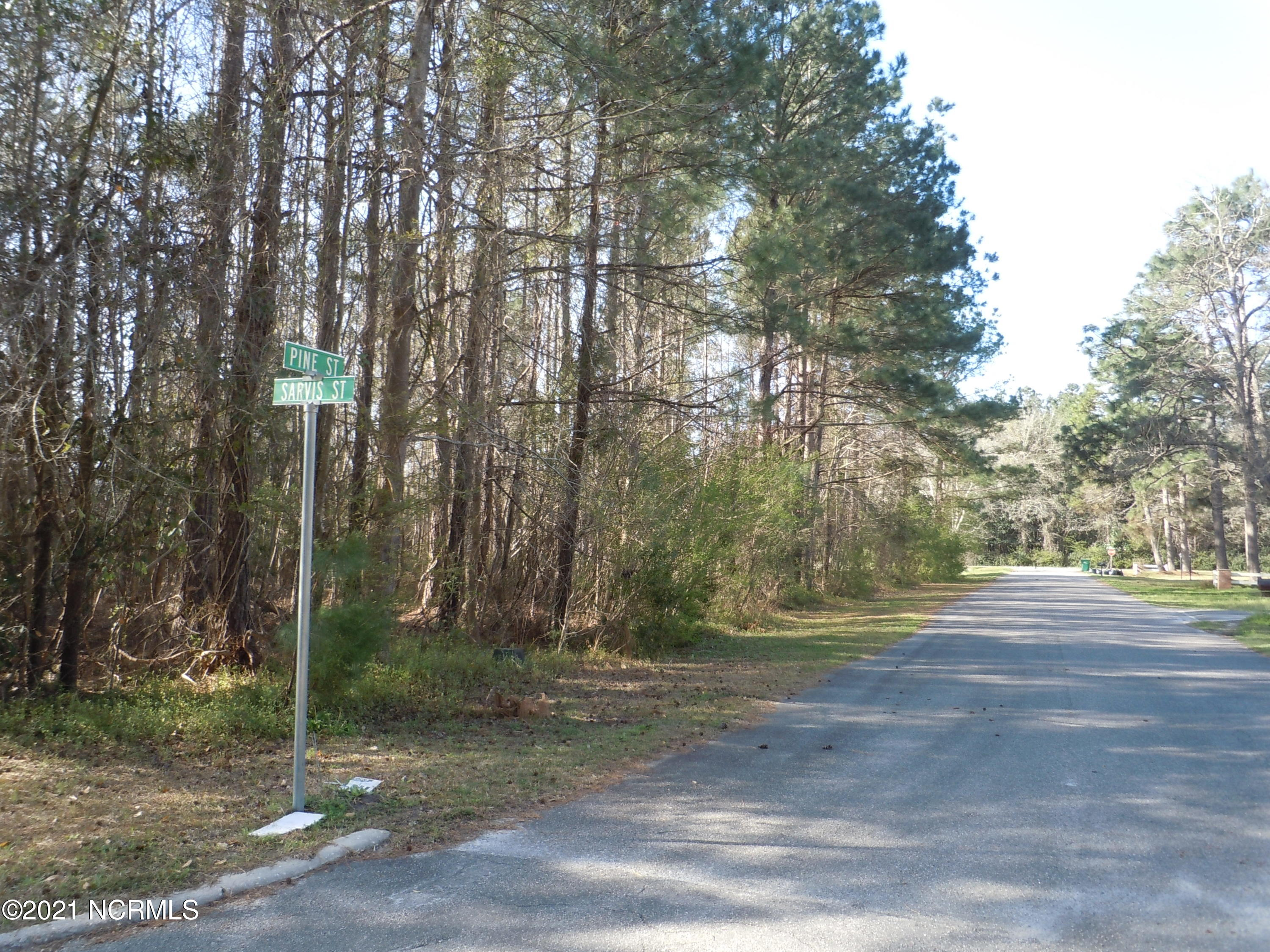 106 Pine Street, Tabor City, North Carolina 28463, ,Residential land,For sale,Pine,100262772