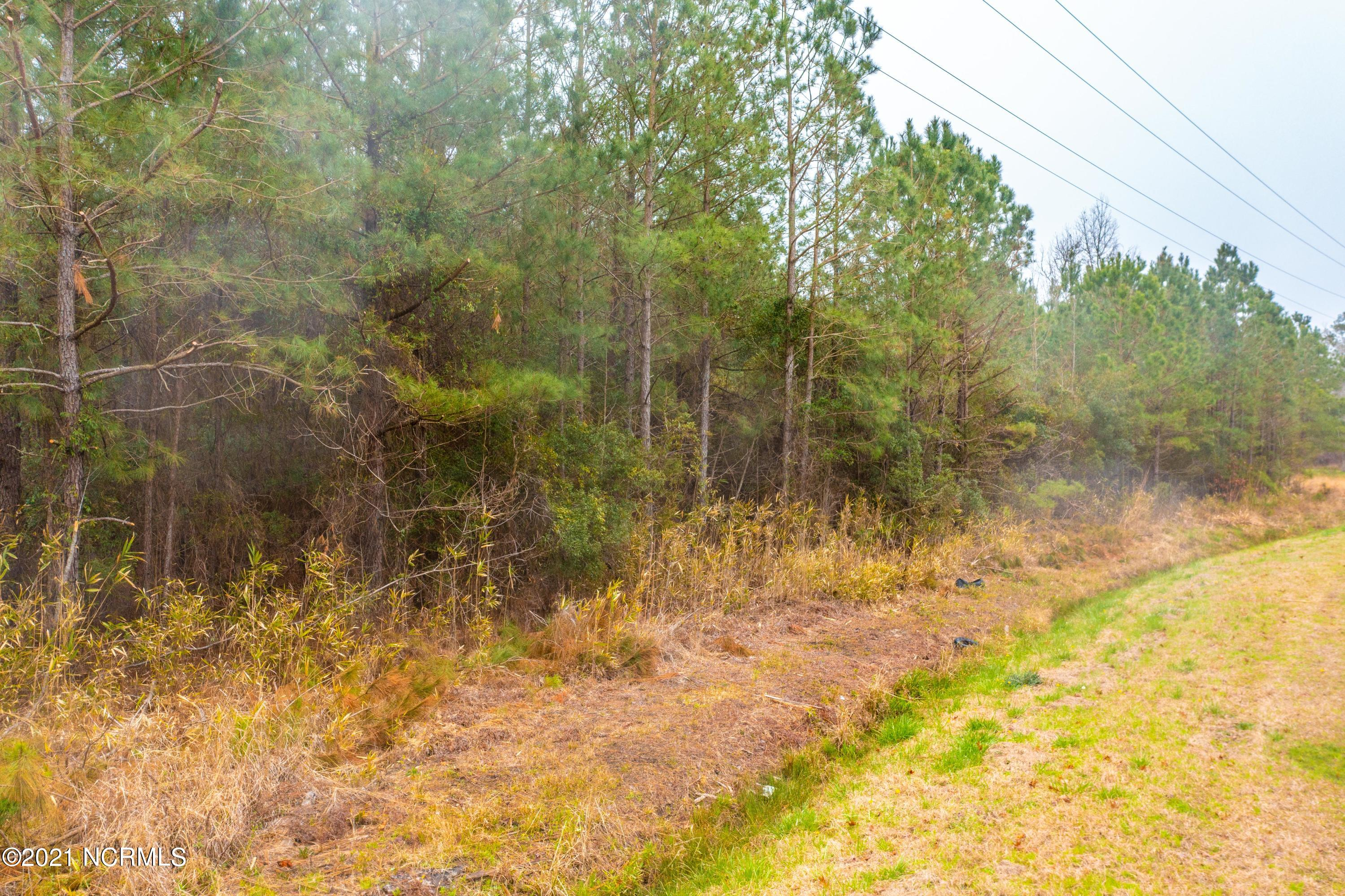 000 Pine Crest Road, Bath, North Carolina 27808, ,Residential land,For sale,Pine Crest,100263253