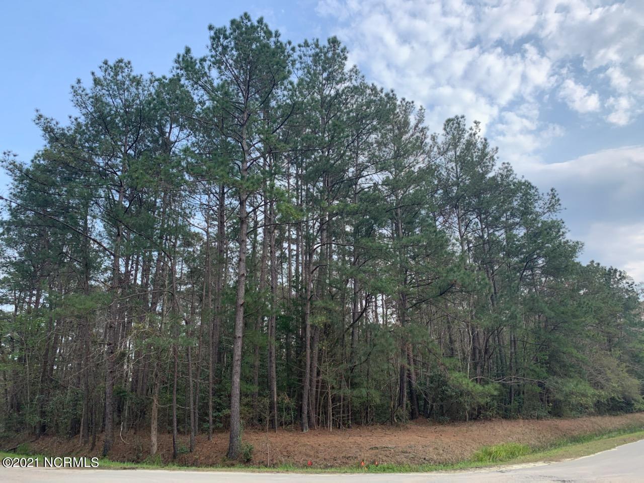 701 Boundary Loop Road, Calabash, North Carolina 28467, ,Residential land,For sale,Boundary Loop,100263545