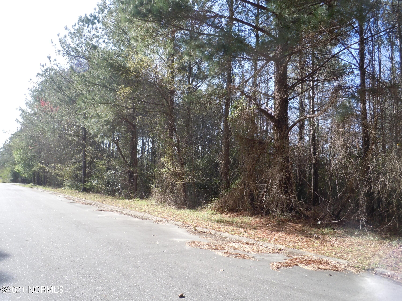 107 Roosevelt Street, Tabor City, North Carolina 28463, ,Residential land,For sale,Roosevelt,100263894