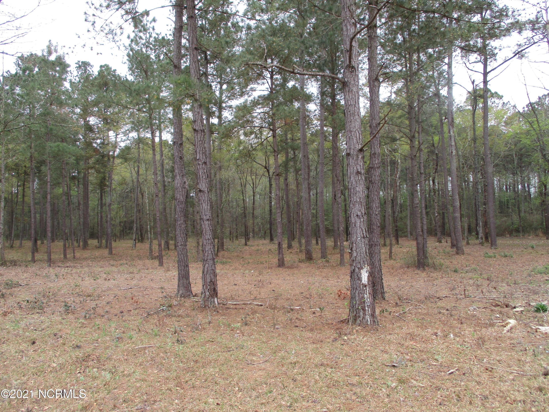 4 Carnostie Drive, Laurinburg, North Carolina 28352, ,Residential land,For sale,Carnostie,100264026