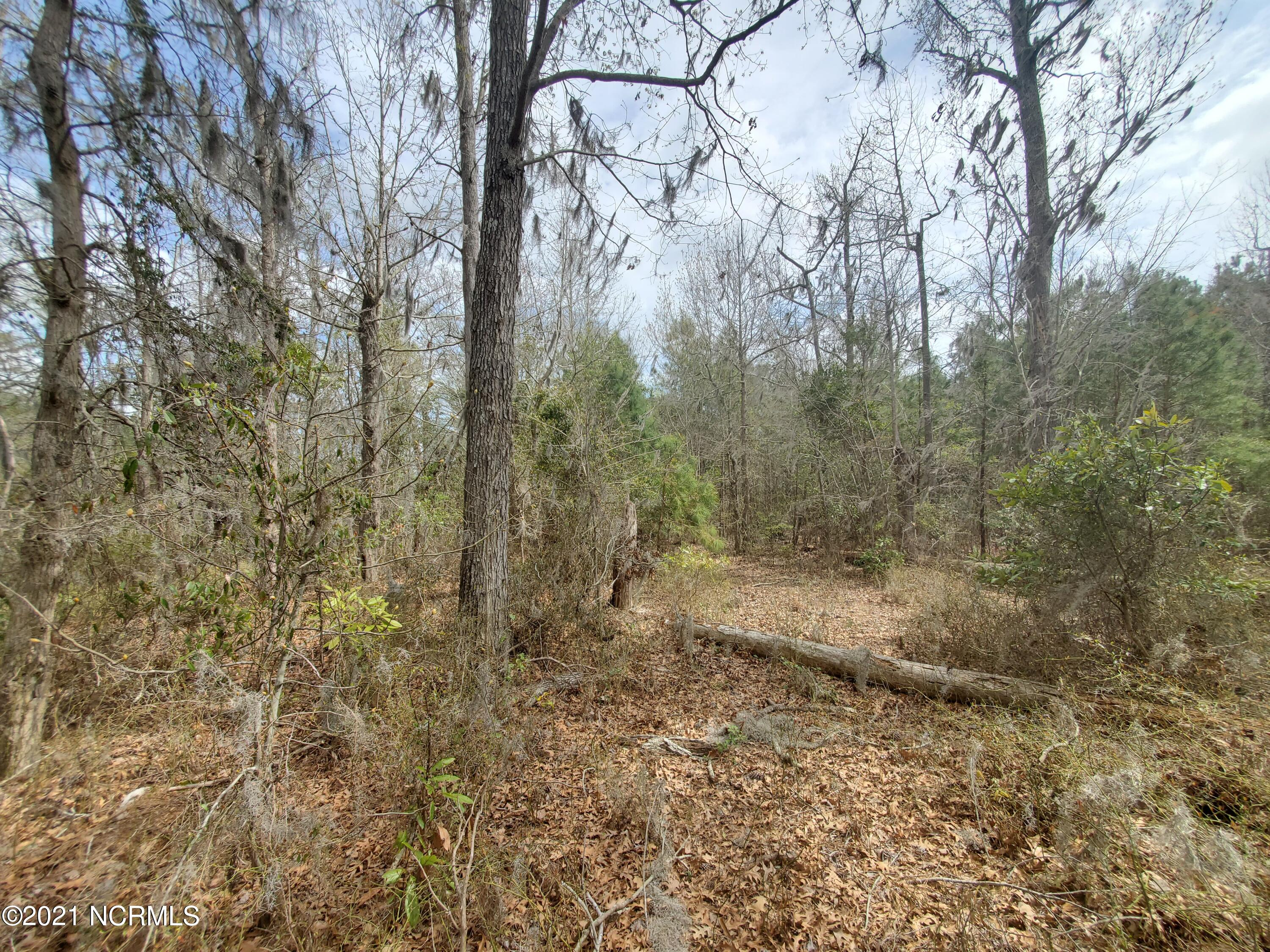 6 River Moss Way, Hertford, North Carolina 27944, ,Residential land,For sale,River Moss,100090341