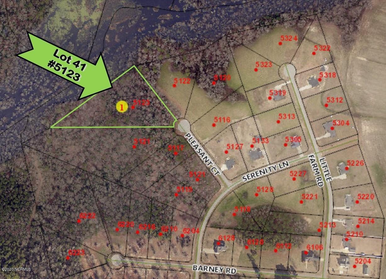 5123 Pleasant Court, Elm City, North Carolina 27822, ,Residential land,For sale,Pleasant,100264552