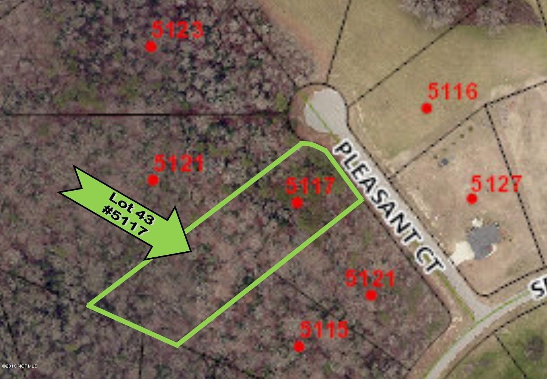 5117 Pleasant Court, Elm City, North Carolina 27822, ,Residential land,For sale,Pleasant,100264567