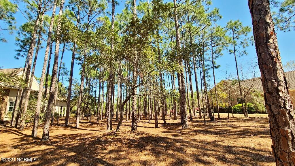 3810 Ridge Crest Drive, Southport, North Carolina 28461, ,Residential land,For sale,Ridge Crest,100264571