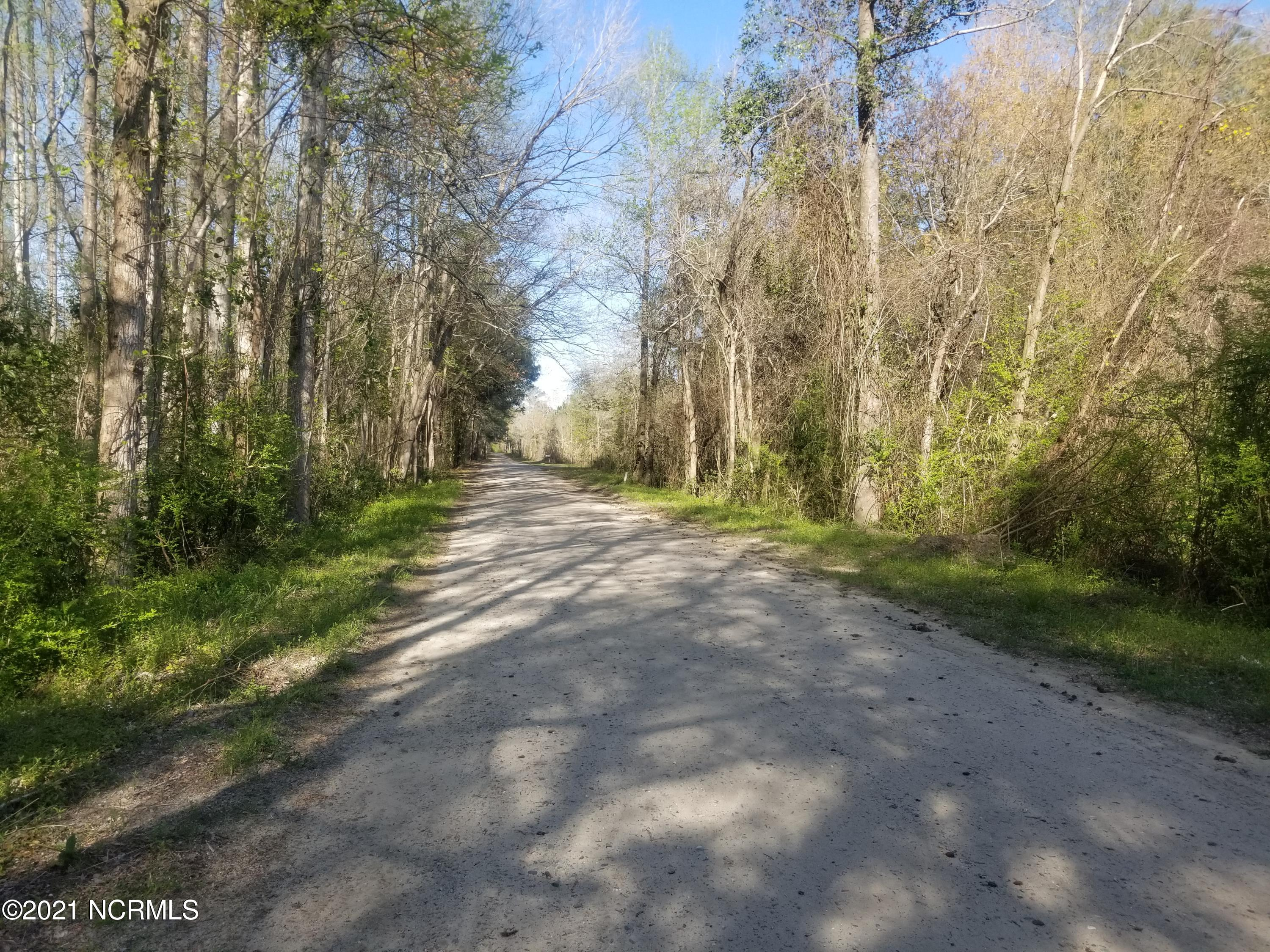 5.09+/- Ac Andrews Drive, Sandyfield, North Carolina 28456, ,Residential land,For sale,Andrews,100264825
