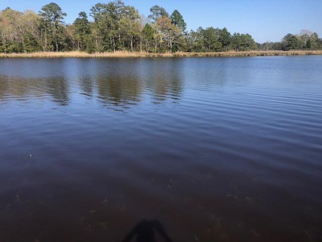 Lot 9 Creek Drive, Belhaven, North Carolina 27810, ,Residential land,For sale,Creek,100265050