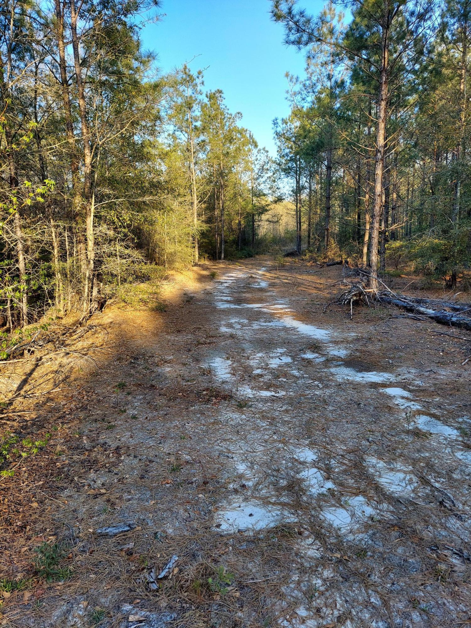 0 Battleground Road, Atkinson, North Carolina 28421, ,Undeveloped,For sale,Battleground,100265277