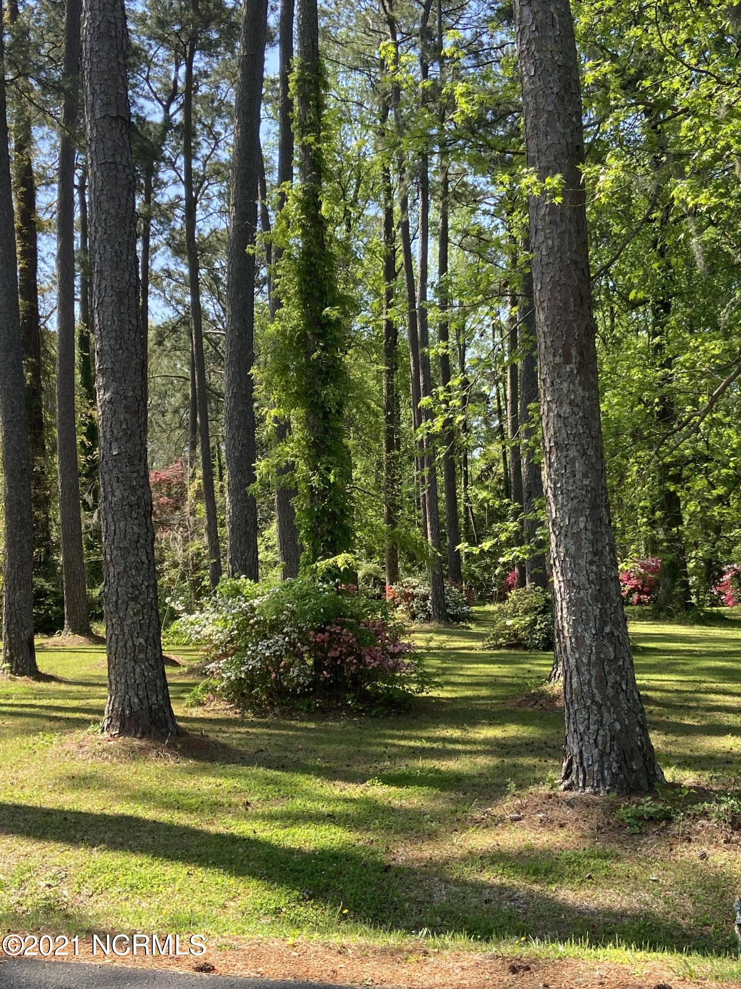 1201 Green Springs Road, New Bern, North Carolina 28560, ,Residential land,For sale,Green Springs,100266271