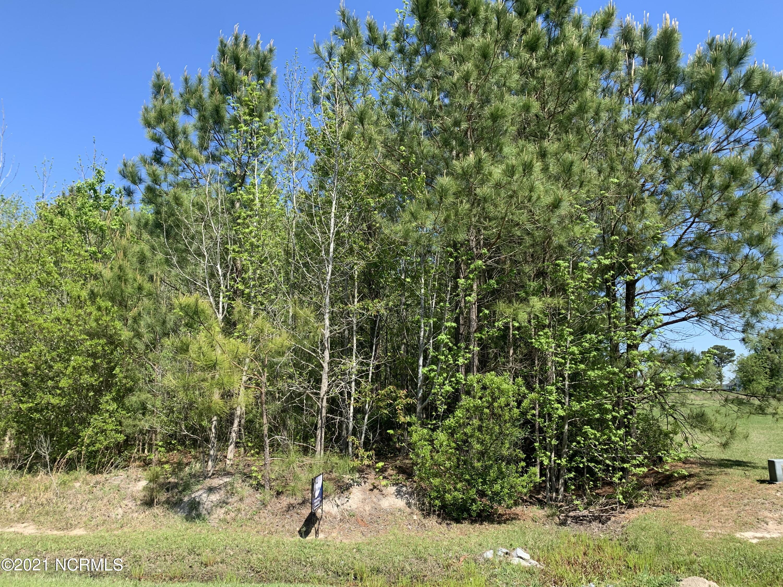 77 Eagle Nest Trail, Blounts Creek, North Carolina 27814, ,Wooded,For sale,Eagle Nest Trail,100263188