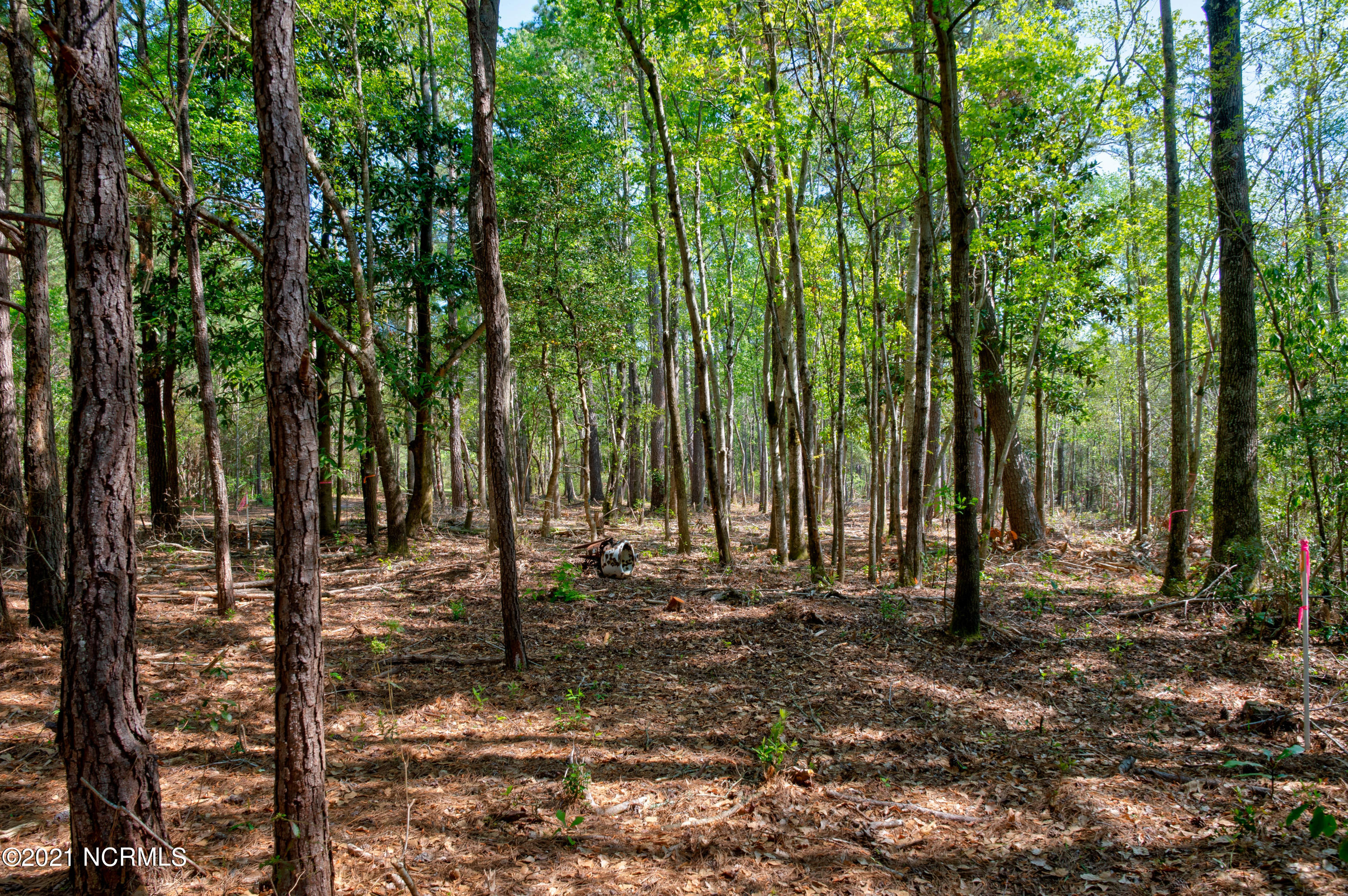 17 White Sand Drive, Hampstead, North Carolina 28443, ,Residential land,For sale,White Sand,100267101
