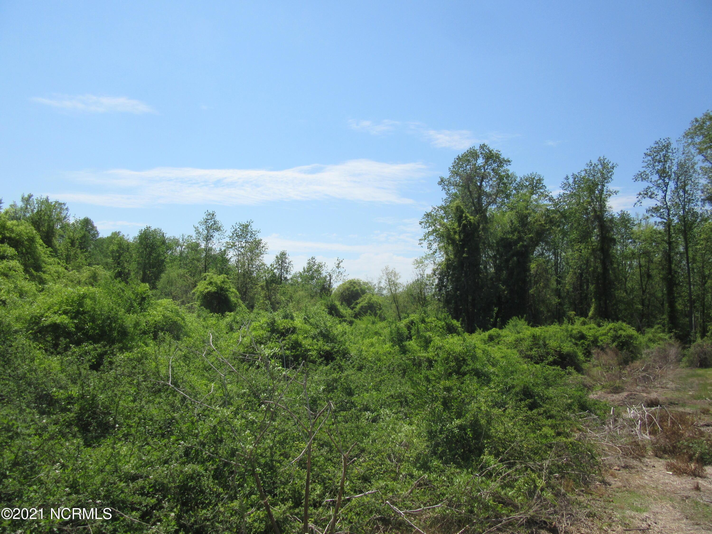 0 Stewartsville Cemetary Road, Laurinburg, North Carolina 28352, ,Residential land,For sale,Stewartsville Cemetary,100264391