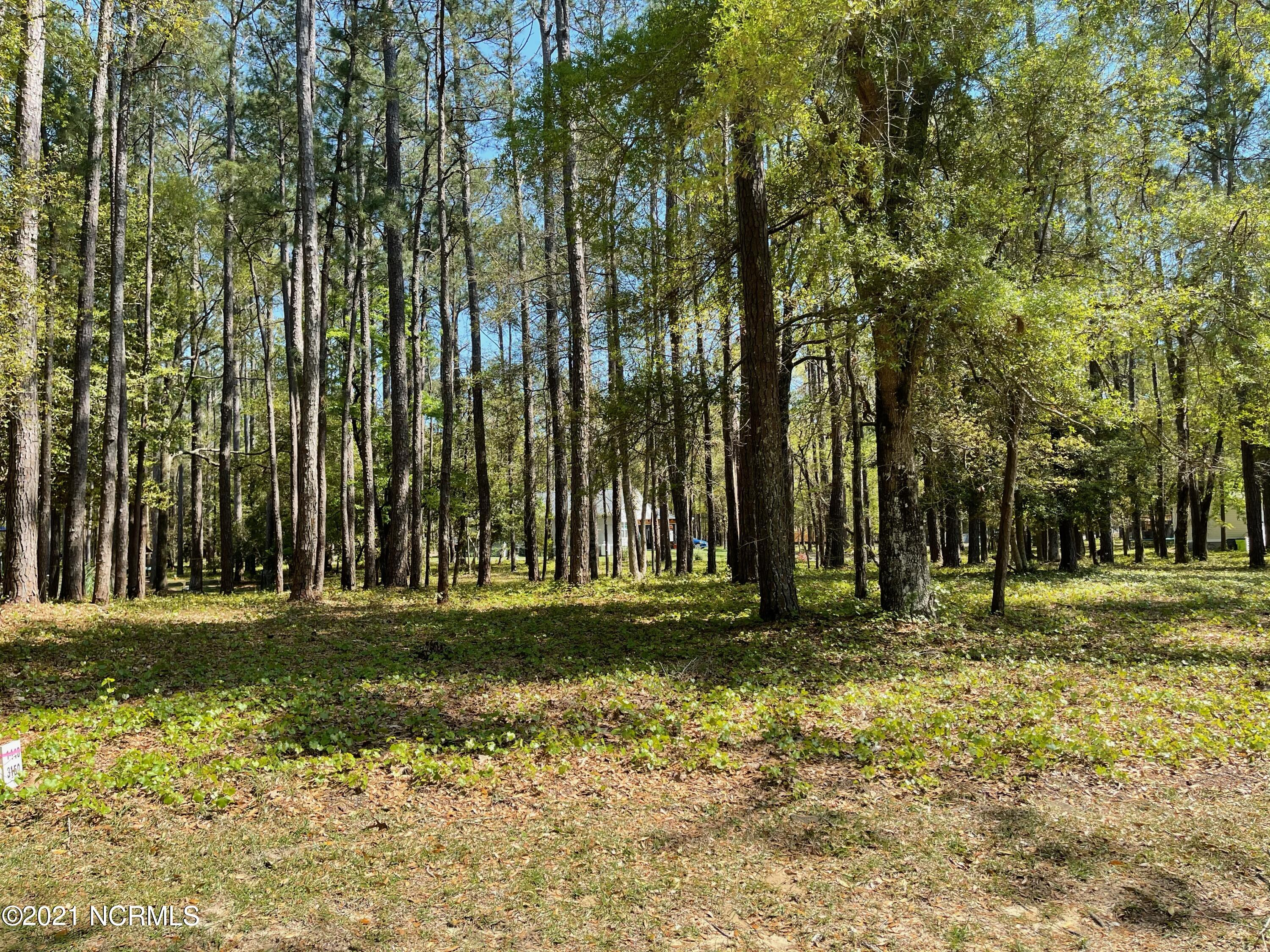 3150 Channel Drive, Bolivia, North Carolina 28422, ,Residential land,For sale,Channel,100268952