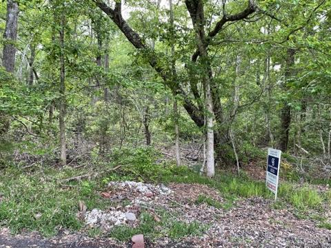 1493 Phelps Street, Shallotte, North Carolina 28470, ,Residential land,For sale,Phelps,100260286