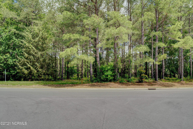 175 Cedar Point Drive, Wallace, North Carolina 28466, ,Residential land,For sale,Cedar Point,100235677