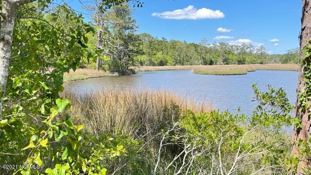 Lot 46 Starkey Creek Drive, Peletier, North Carolina 28584, ,Residential land,For sale,Starkey Creek,100272478
