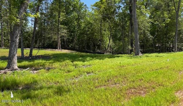 Lot 43 Starkey Creek Drive, Peletier, North Carolina 28584, ,Residential land,For sale,Starkey Creek,100272476