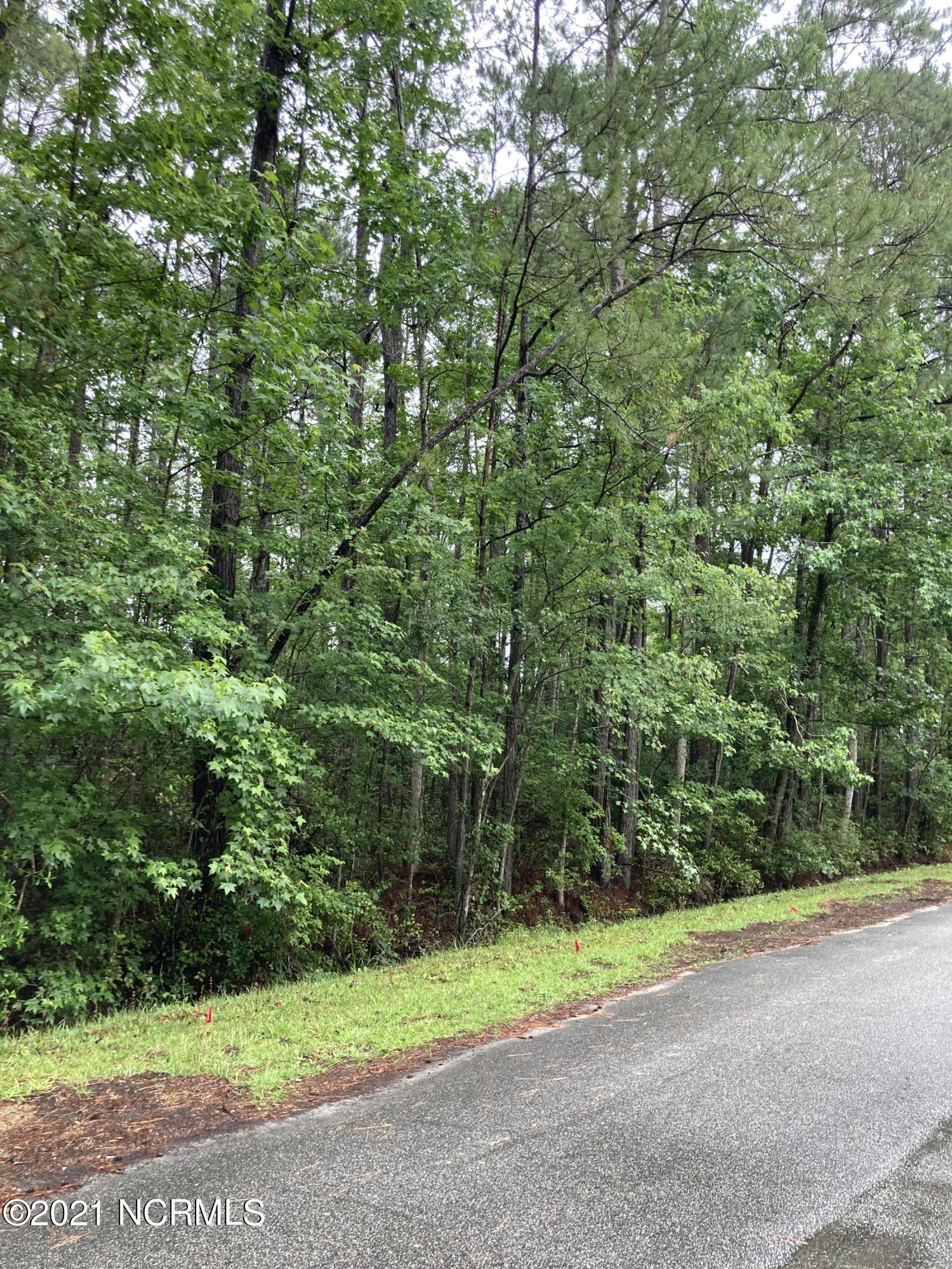 79 Northeast Drive, Calabash, North Carolina 28467, ,Residential land,For sale,Northeast,100274811