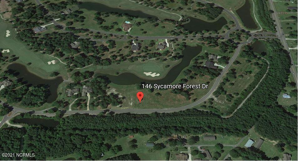 146 Sycamore Forest Drive, Wallace, North Carolina 28466, ,Residential land,For sale,Sycamore Forest,100274791