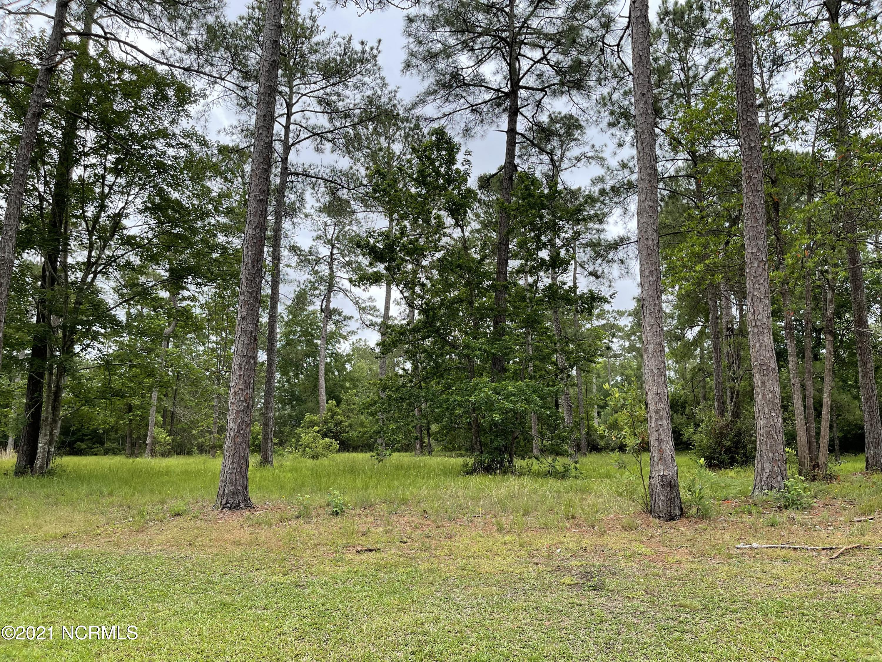 Lot 9 Bay Hill Court, Shallotte, North Carolina 28470, ,Residential land,For sale,Bay Hill,100275330