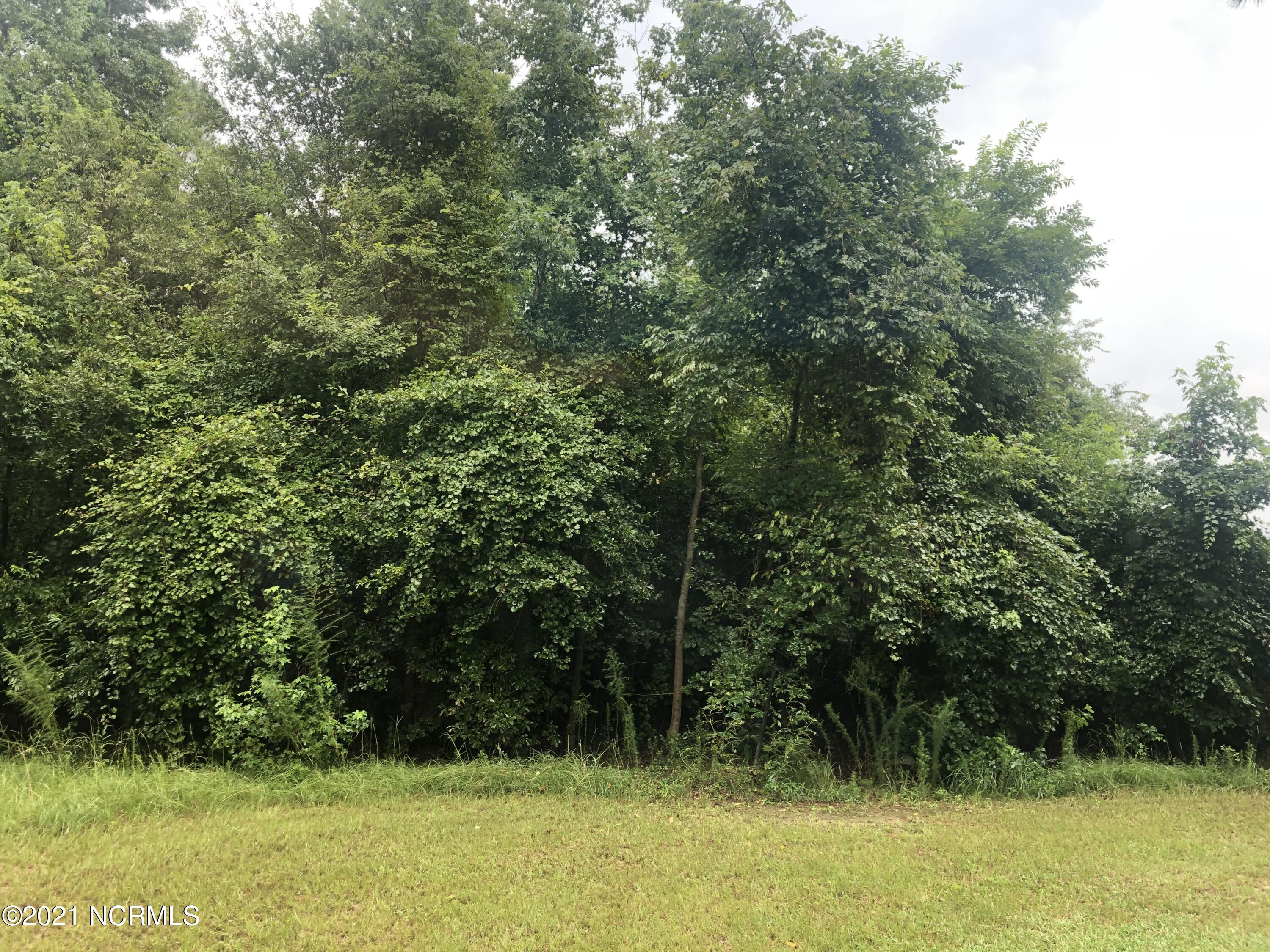 200 Richland Drive, Red Springs, North Carolina 28377, ,Wooded,For sale,Richland,100275408