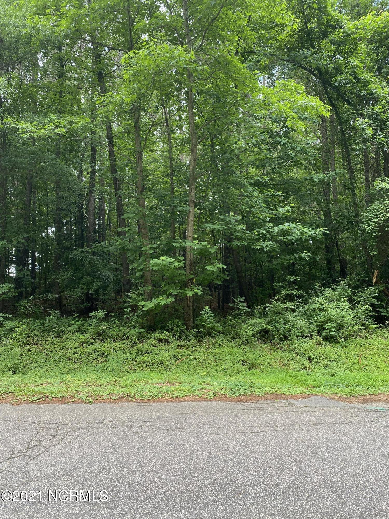 3313 Cornwallis Drive, Rocky Mount, North Carolina 27804, ,Residential land,For sale,Cornwallis,100275426