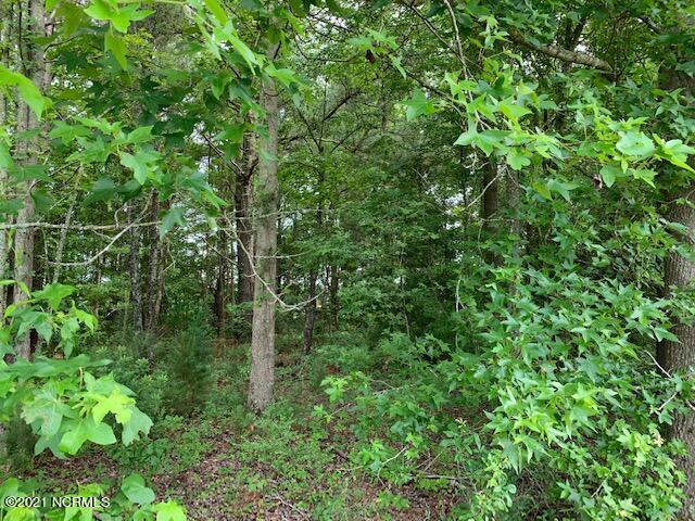 7109 Swamp Fox Highway, Tabor City, North Carolina 28463, ,Residential land,For sale,Swamp Fox,100275650