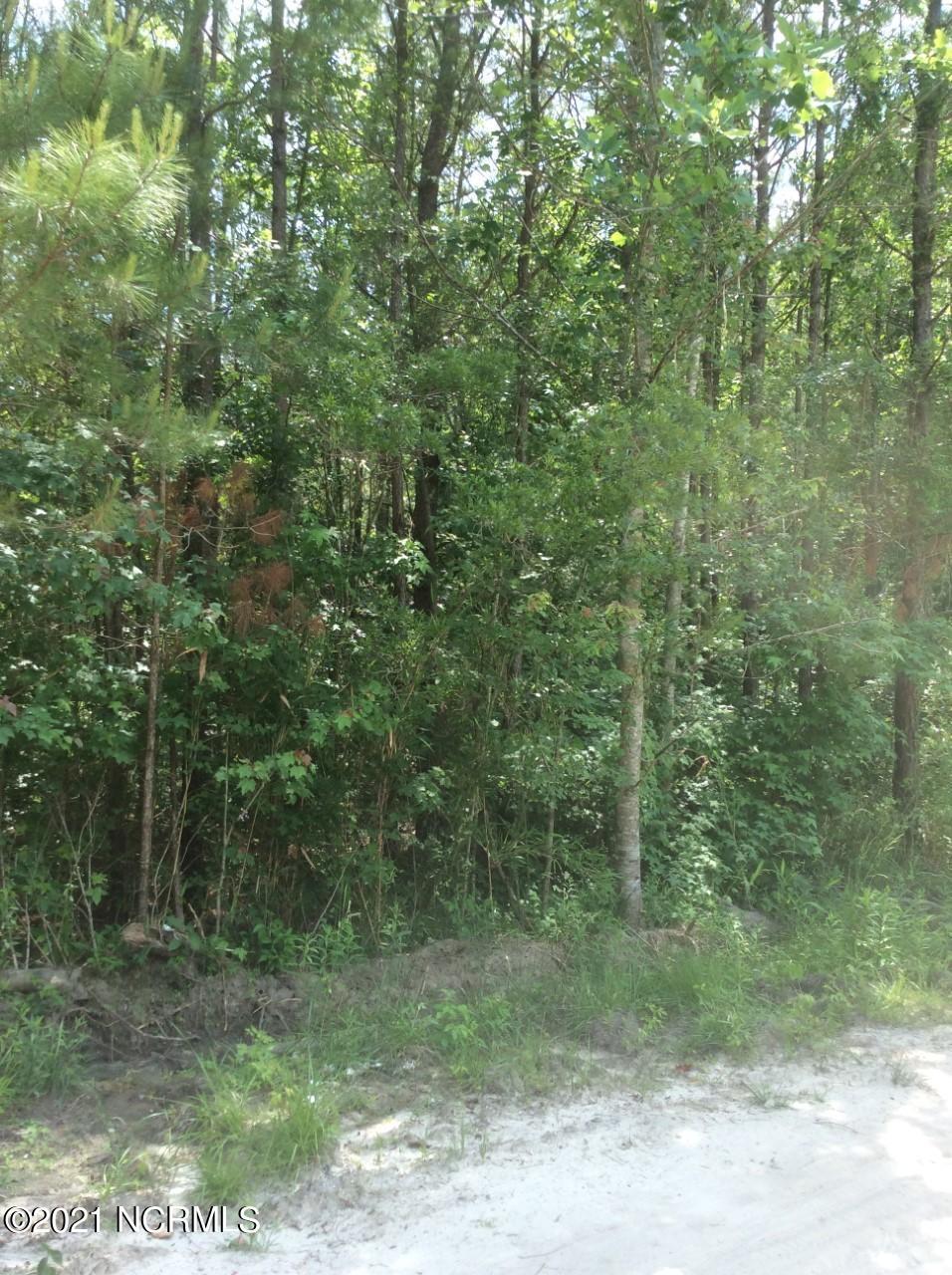 237 Harris Creek Drive, Maple Hill, North Carolina 28454, ,Residential land,For sale,Harris Creek,100275837