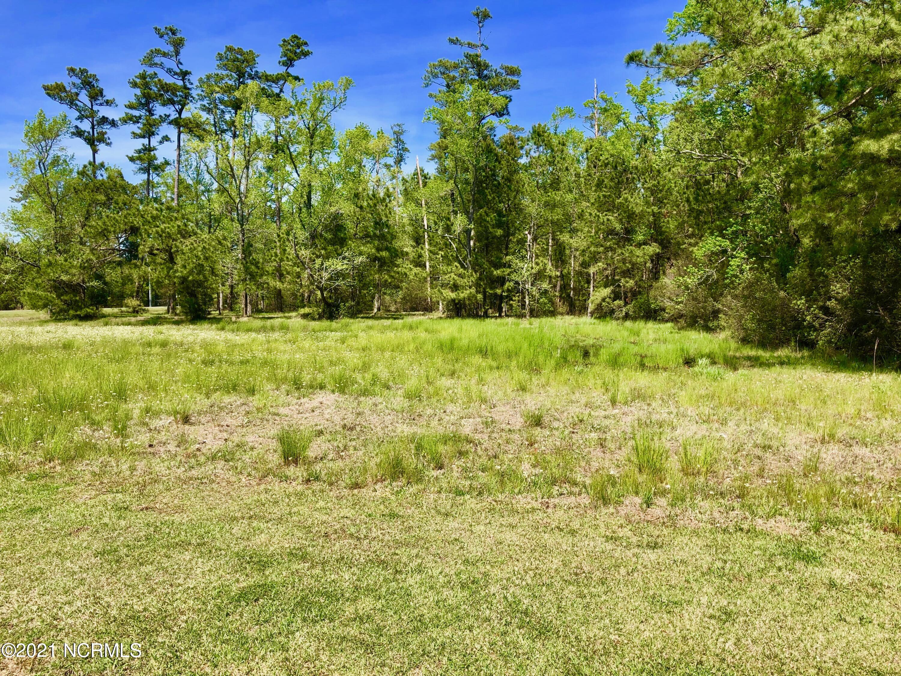 Lot #88 Dowry Creek, Belhaven, North Carolina 27810, ,Residential land,For sale,Dowry,100161688