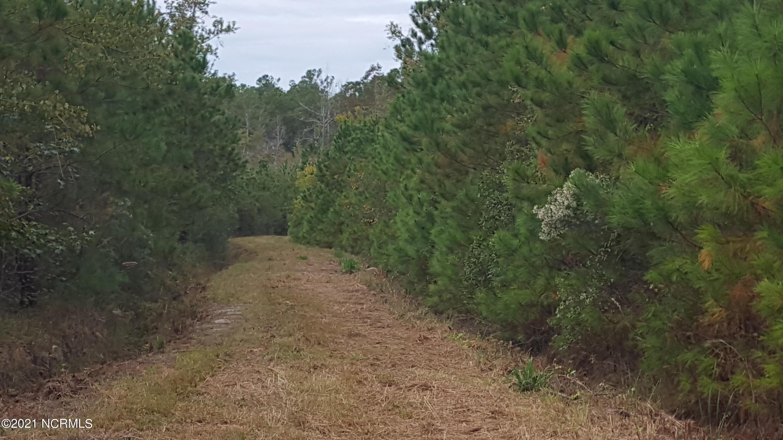3001 Upper Neck Road, Bayboro, North Carolina 28515, ,Timberland,For sale,Upper Neck,100276012