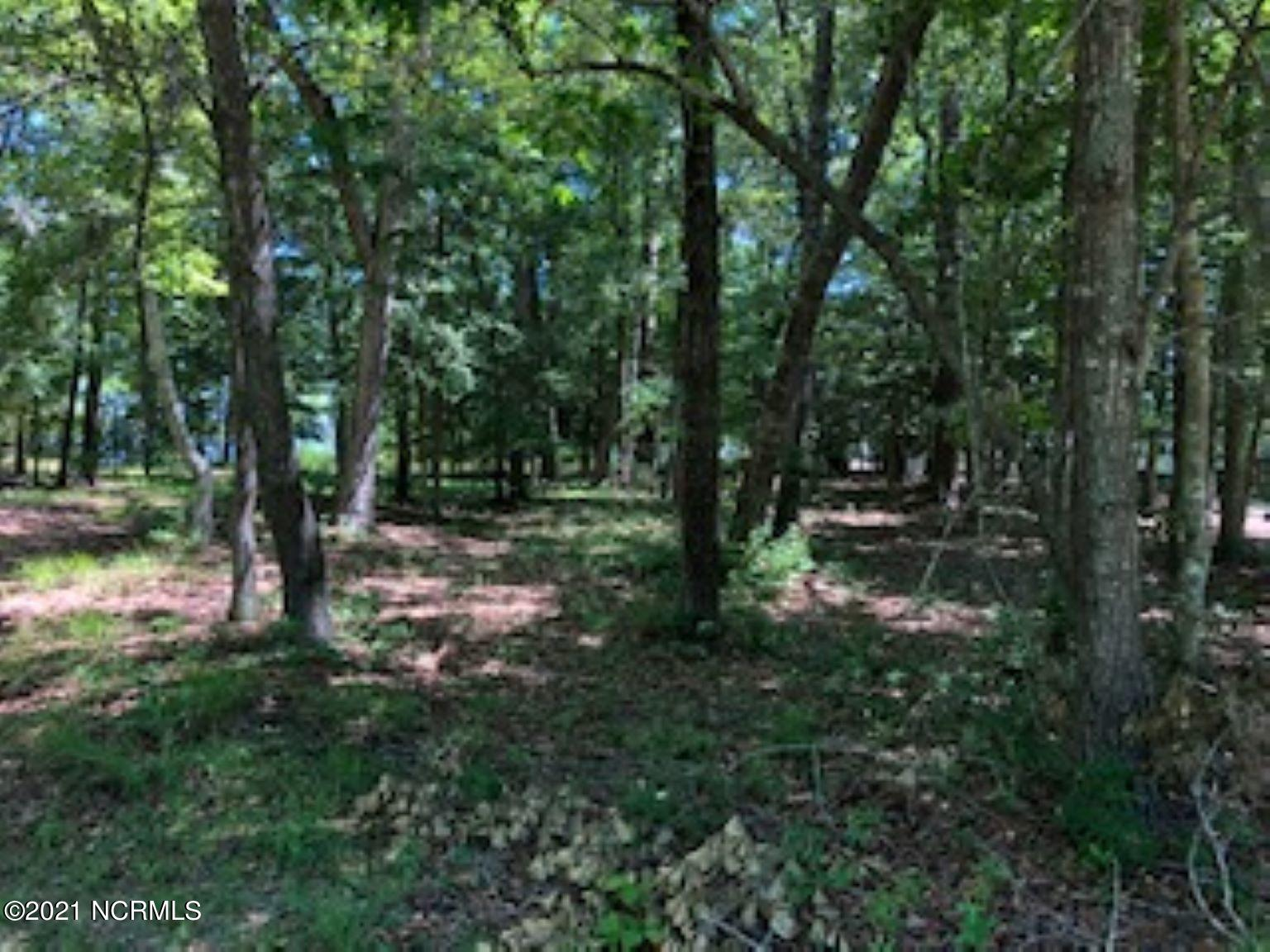 44 Bayview Drive, Chocowinity, North Carolina 27817, ,Residential land,For sale,Bayview,100276130