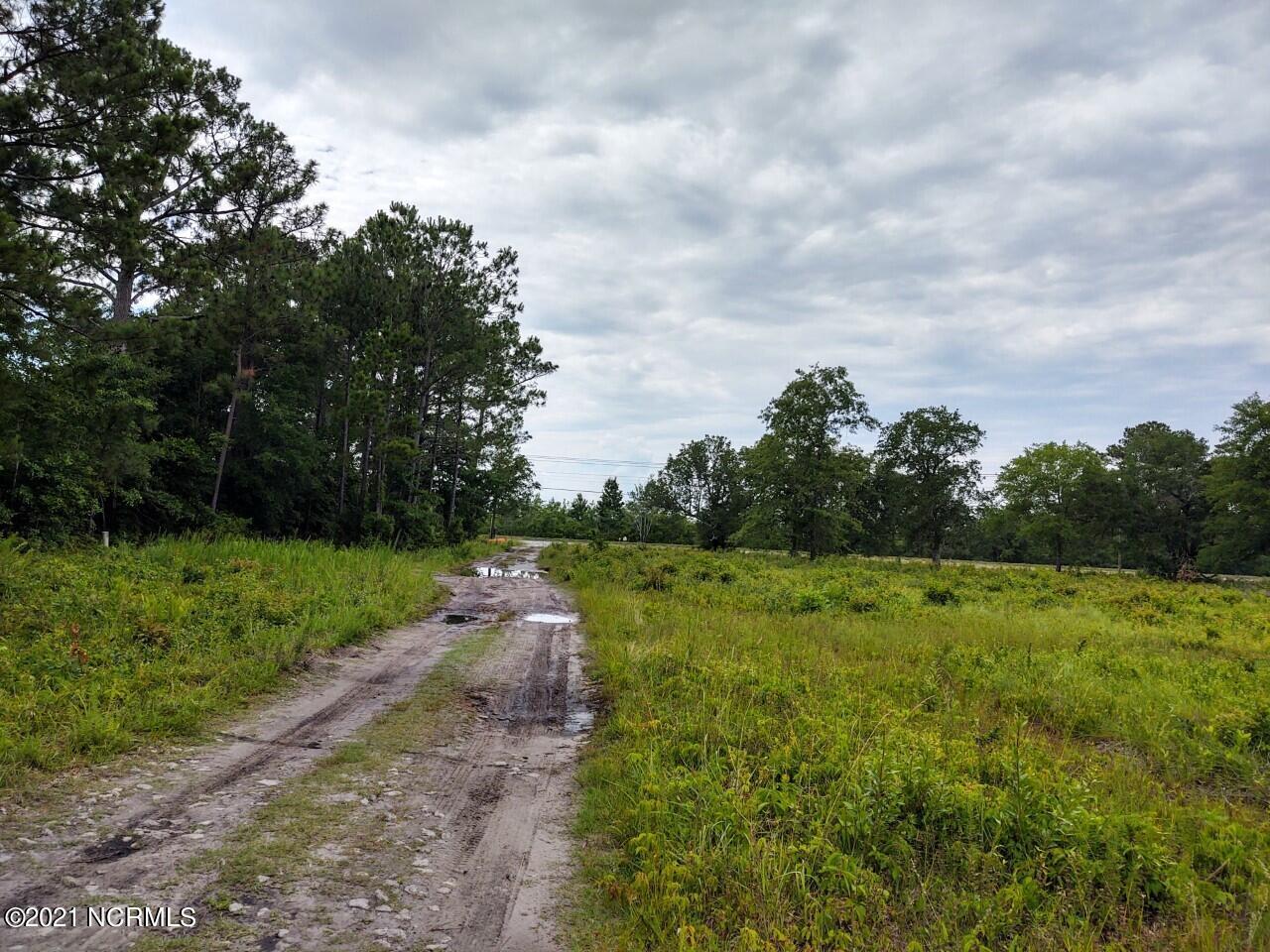 1.24 Demps Road, Hampstead, North Carolina 28443, ,Undeveloped,For sale,Demps,100276250