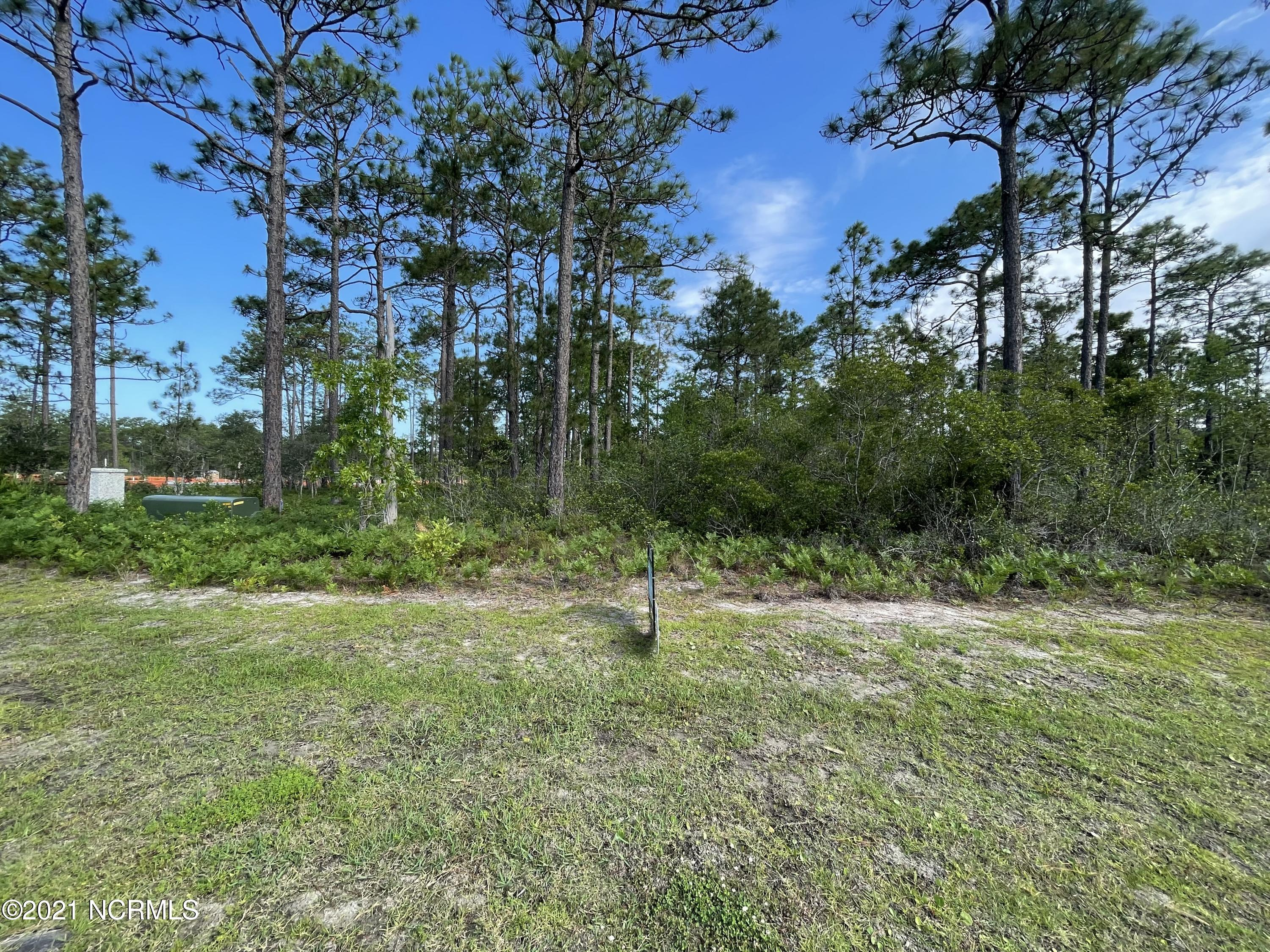 215 Fifty Lakes Drive, Boiling Spring Lakes, North Carolina 28461, ,Residential land,For sale,Fifty Lakes,100276253
