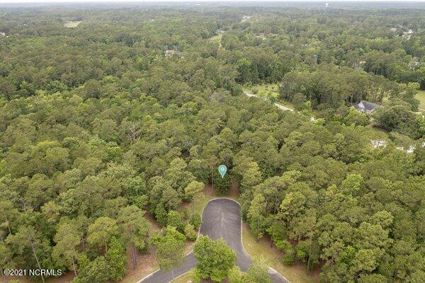 L47 & L48 Lilly Pad Court, Shallotte, North Carolina 28470, ,Residential land,For sale,Lilly Pad,100276319