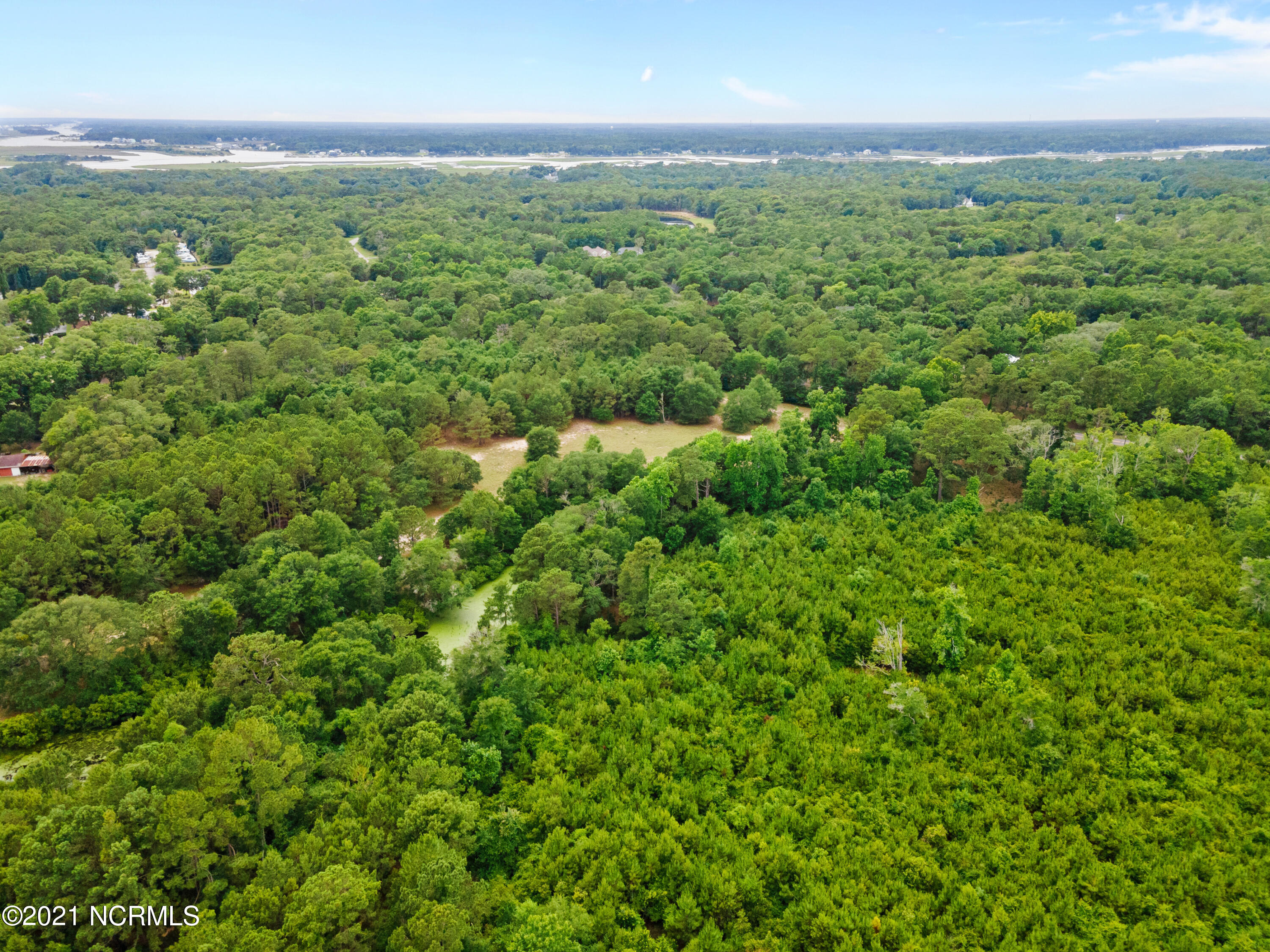 Tract 13 Boones Neck Road, Supply, North Carolina 28462, ,Undeveloped,For sale,Boones Neck,100276483