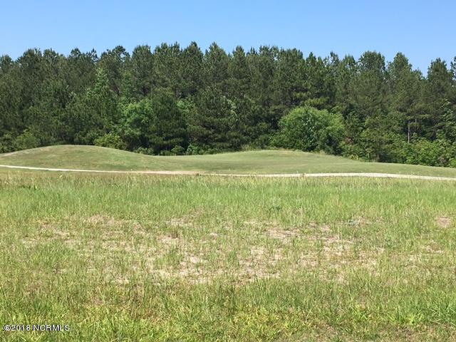 181 Sir Walter Court, Hampstead, North Carolina 28443, ,Residential land,For sale,Sir Walter,100278399