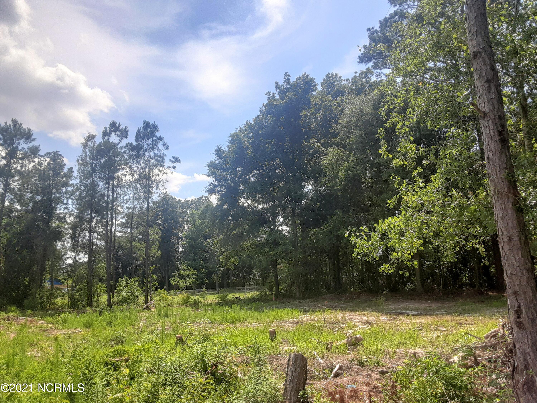 3101 Ervins Place Drive, Castle Hayne, North Carolina 28429, ,Residential land,For sale,Ervins Place,100276349
