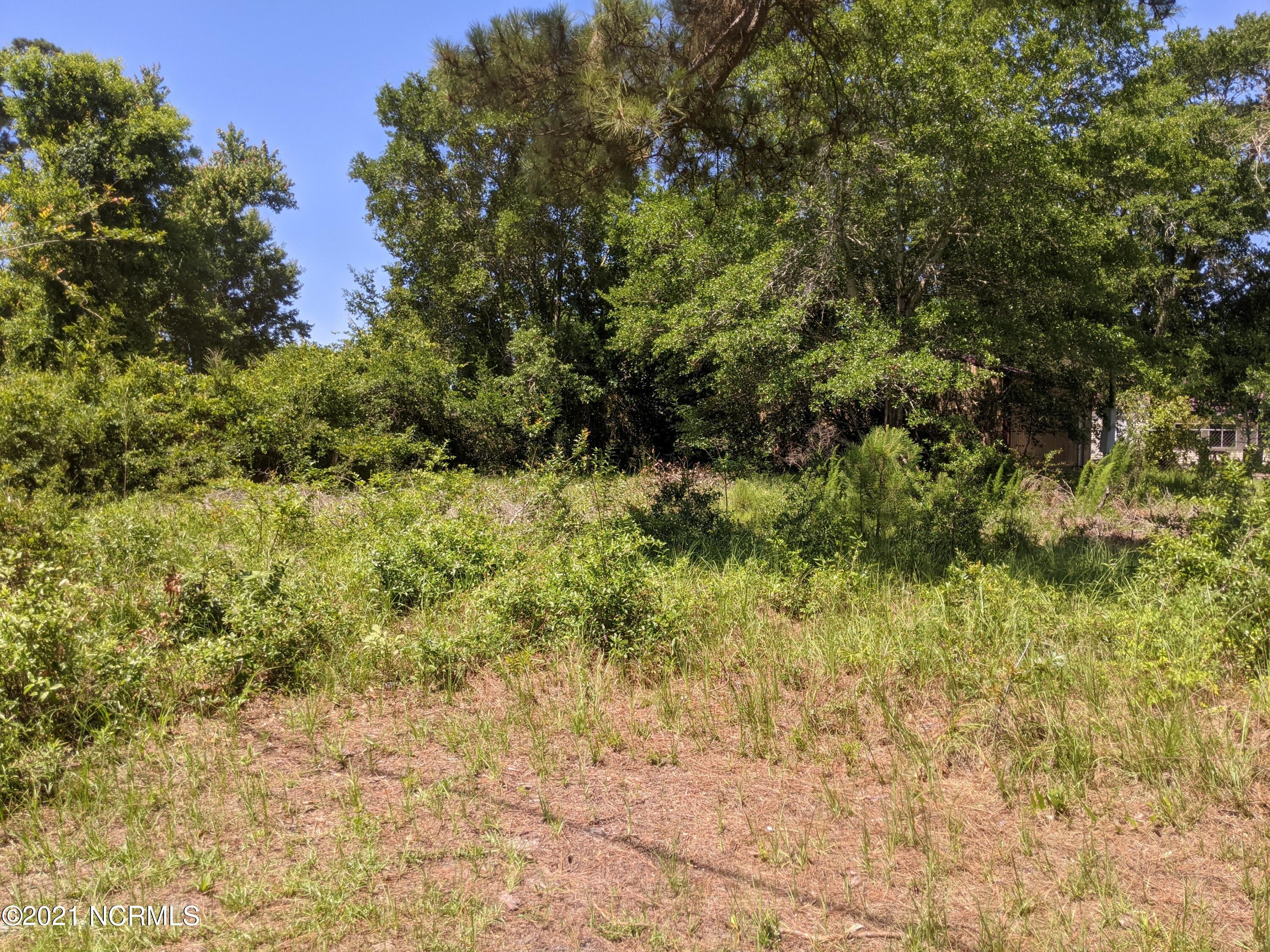 2833 Andrews Drive, Supply, North Carolina 28462, ,Residential land,For sale,Andrews,100277137